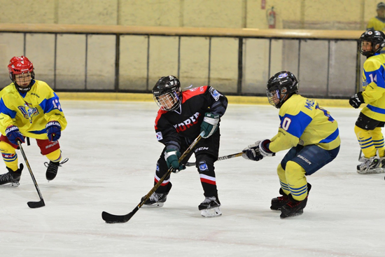 Japan-Korea Ice Hockey International Exchange Friendly Game2